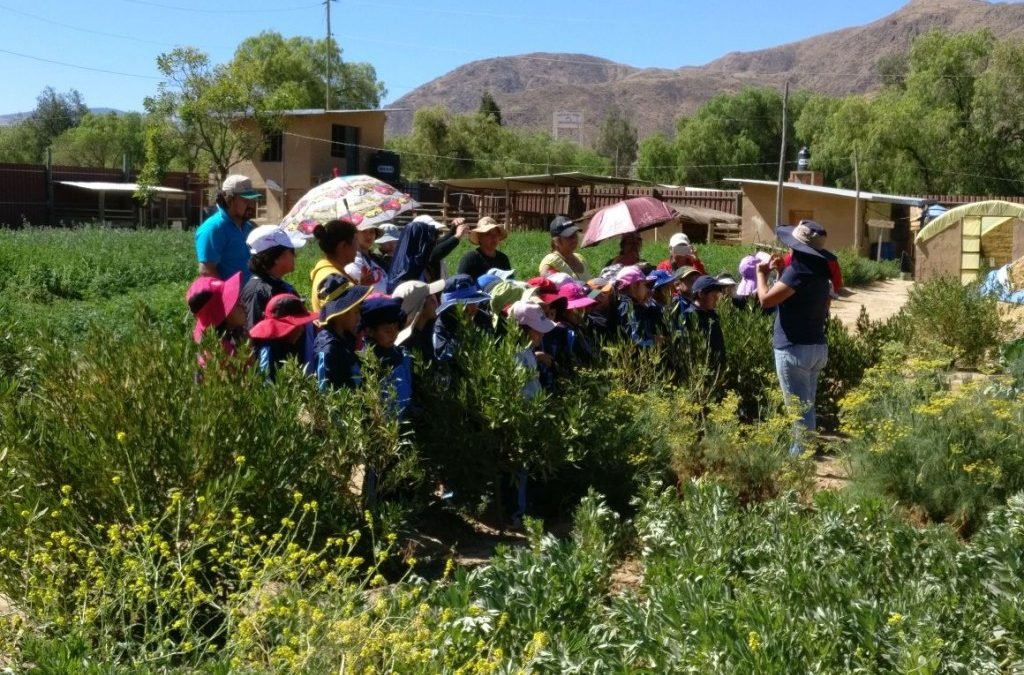 Cochabamba-Area Students Visiting the Center for Ecological Agriculture