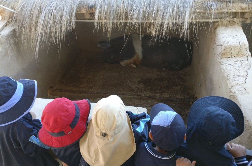 70 Students from Unidad Educativa Santa Luisa de Marillac Visit the Center for Ecological Agriculture